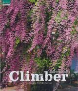 ไม้เลื้อยประดับ Climber