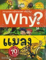 Why? แมลง