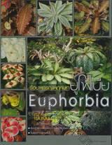 ร้อยพรรณพฤกษา : ยูโฟเบีย - Euphorbia