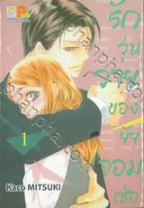 รักวุ่นวายของยัยจอมเซ่อ LOVE IS PHANTOM เล่ม 01